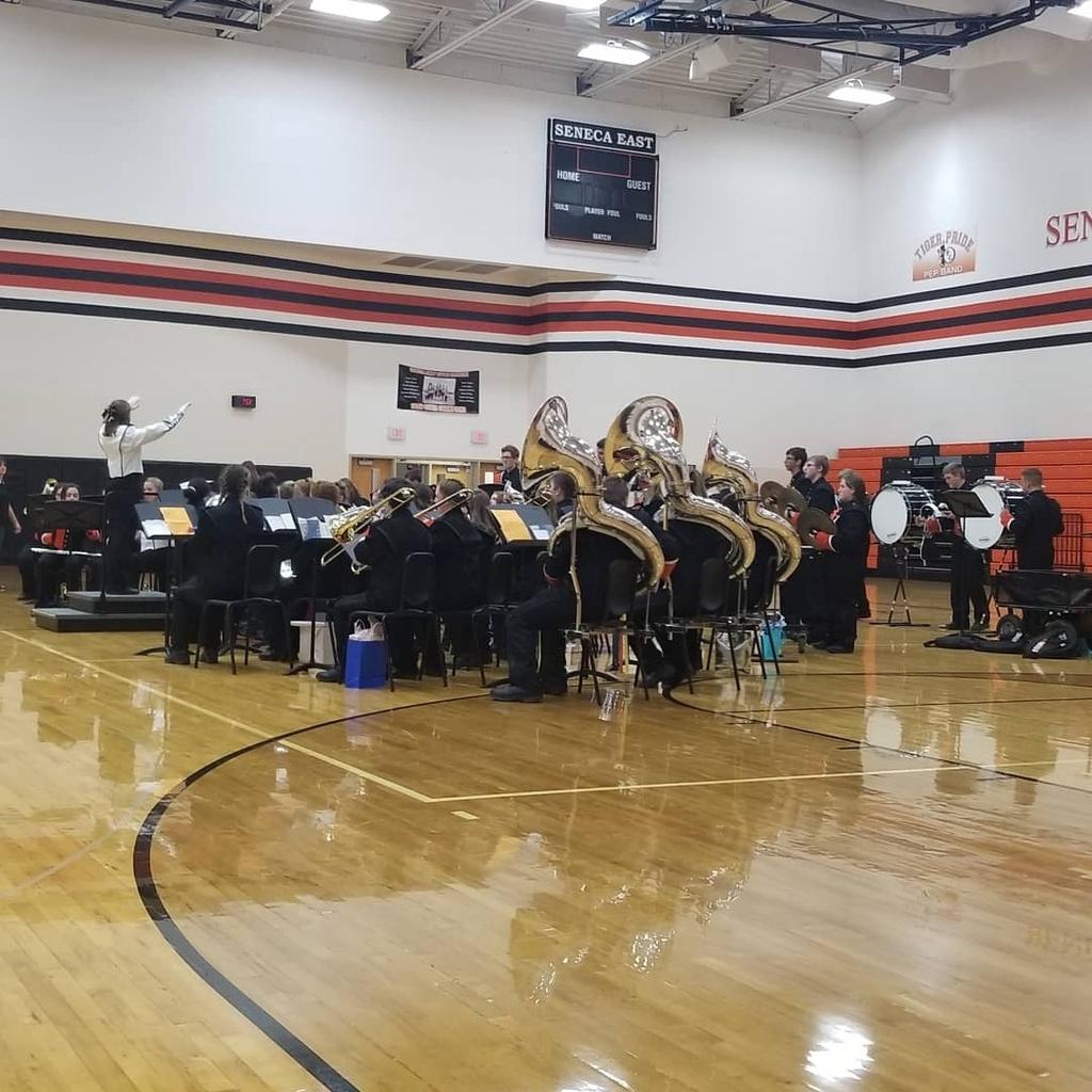 tiger pride band